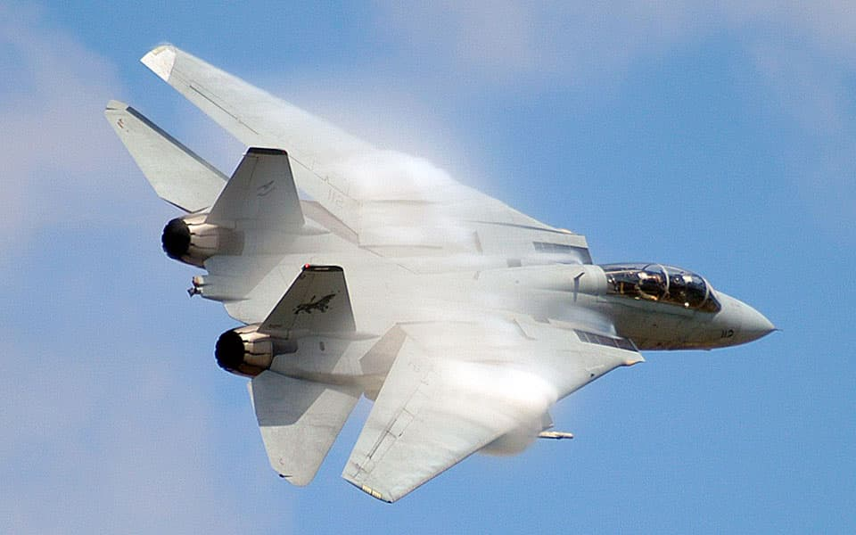 Grumman F-14 Tomcat - flyvere.dk